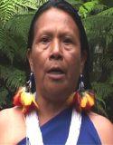 Rosa Mashumar Inchis